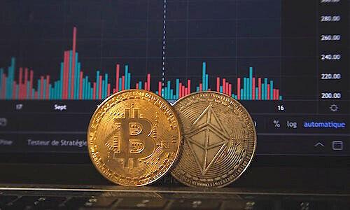 priimkite bitcoin mokėjimus svetainėje bitcoin investicijos ir prekyba